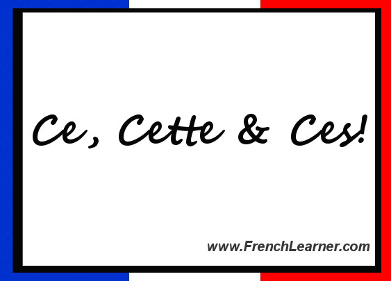 French Demonstrative Pronouns http://www.frenchlearner.com/grammar/demonstrative-pronouns/